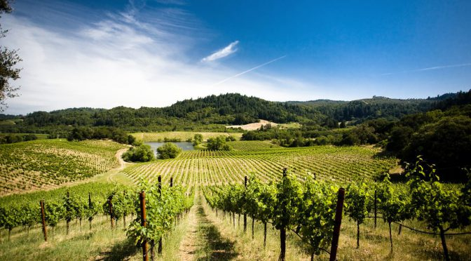 Visit These First-Class Sonoma Valley Wineries