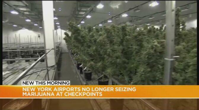 Report: NY airports to no longer seize 'low level' amounts of marijuana