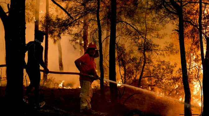 Turkey wildfires: Eight dead as blazes sweep through tourist resorts